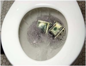 FlushedDollars