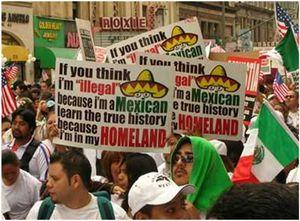 IllegalAlienHomeland