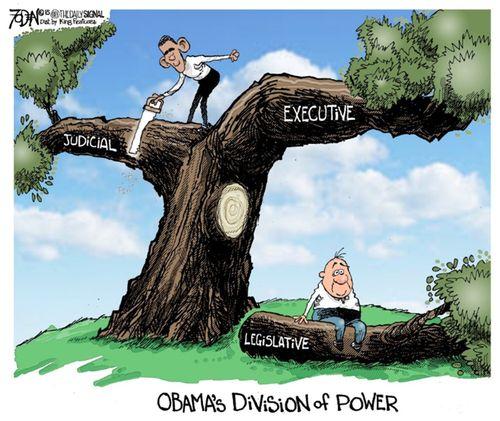 ObamasConstitution